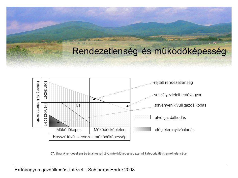 Erdővagyon-gazdálkodási Intézet – Schiberna Endre 2008 Rendezetlenség és működőképesség Rendezetlen Rendezett Hosszú távú szervezeti működőképesség Ha