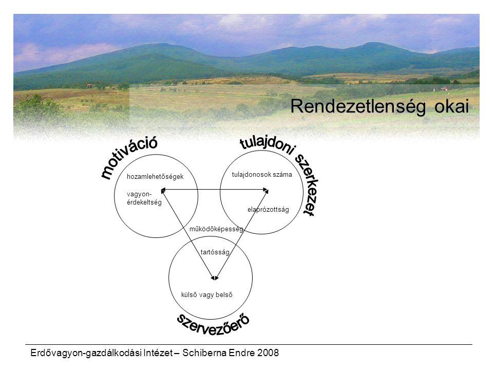 Erdővagyon-gazdálkodási Intézet – Schiberna Endre 2008 Rendezetlenség okai elaprózottság tulajdonosok száma külső vagy belső vagyon- érdekeltség működ