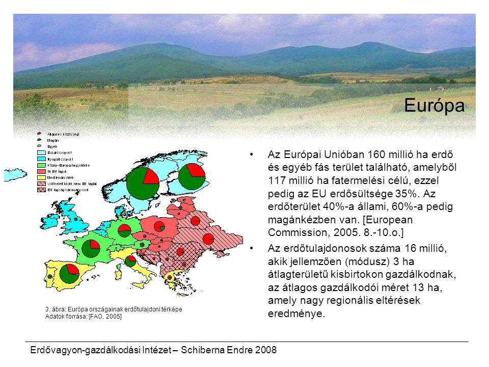 Erdővagyon-gazdálkodási Intézet – Schiberna Endre 2008 Európa Az Európai Unióban 160 millió ha erdő és egyéb fás terület található, amelyből 117 milli