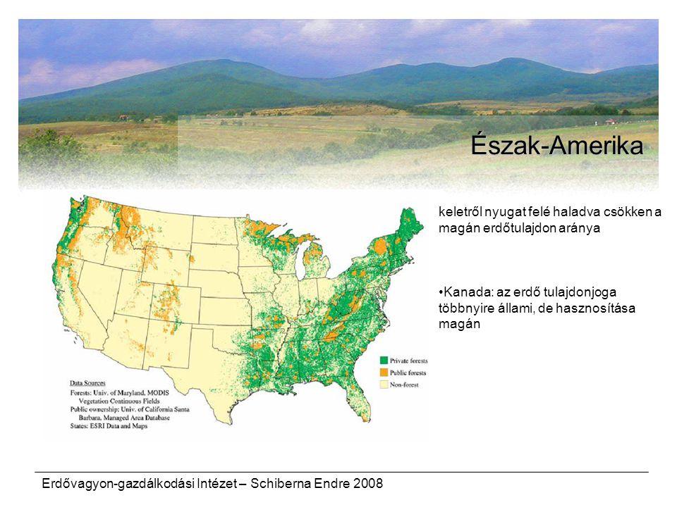 Erdővagyon-gazdálkodási Intézet – Schiberna Endre 2008 Észak-Amerika keletről nyugat felé haladva csökken a magán erdőtulajdon aránya Kanada: az erdő