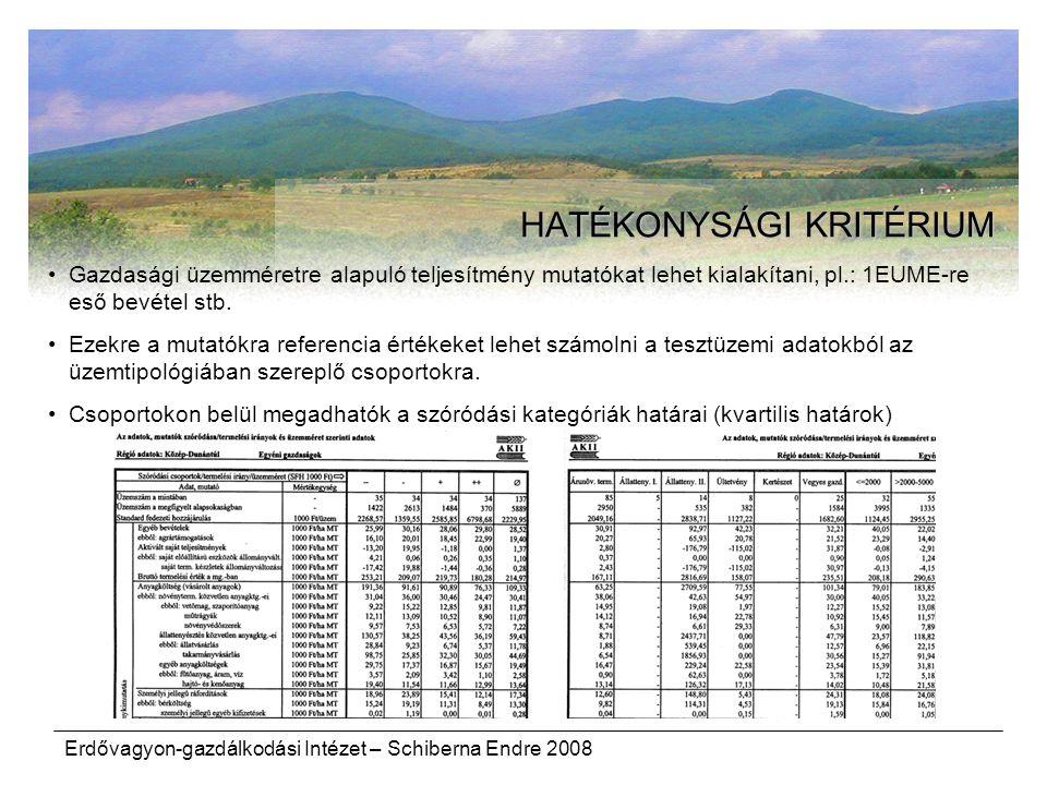 Erdővagyon-gazdálkodási Intézet – Schiberna Endre 2008 HATÉKONYSÁGI KRITÉRIUM Gazdasági üzemméretre alapuló teljesítmény mutatókat lehet kialakítani,
