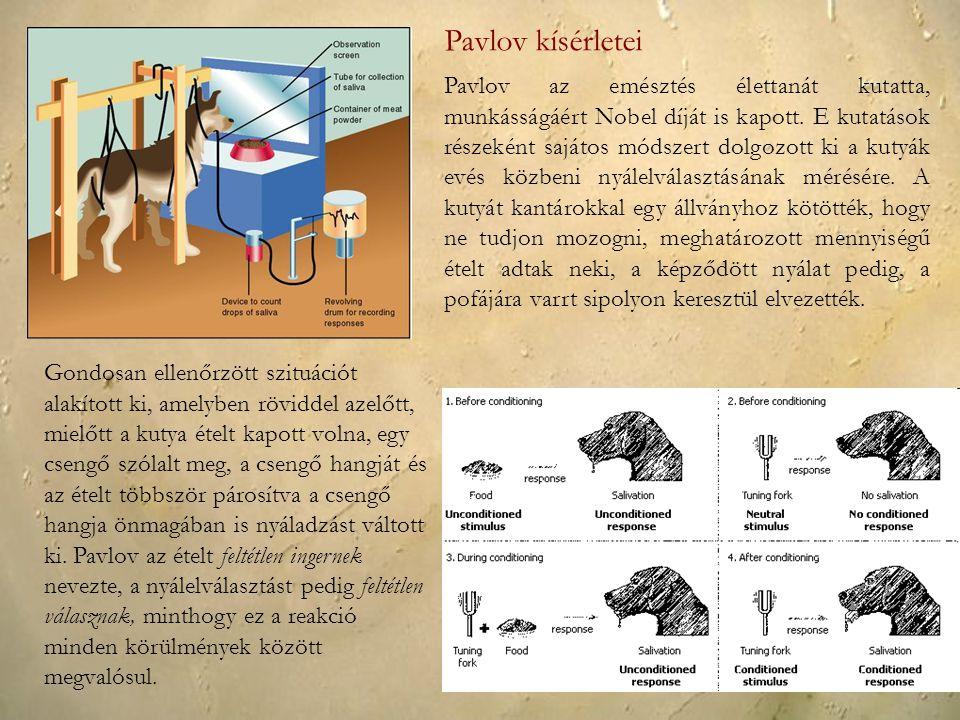 Pavlov az emésztés élettanát kutatta, munkásságáért Nobel díját is kapott. E kutatások részeként sajátos módszert dolgozott ki a kutyák evés közbeni n
