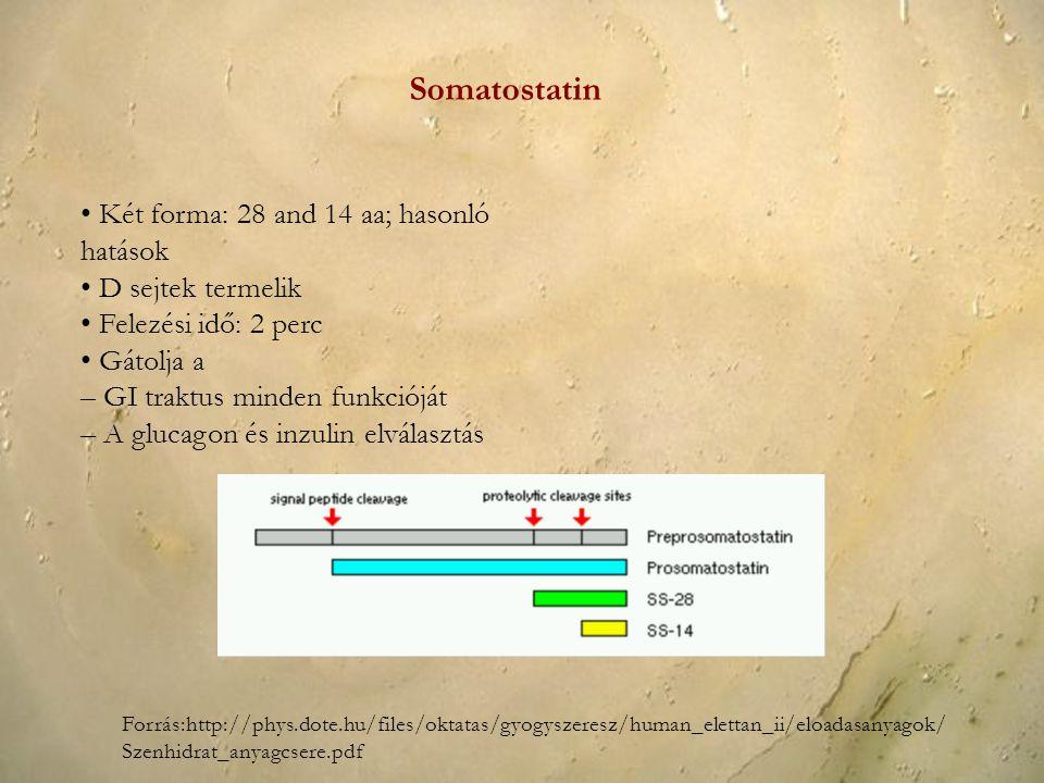 Két forma: 28 and 14 aa; hasonló hatások D sejtek termelik Felezési idő: 2 perc Gátolja a – GI traktus minden funkcióját – A glucagon és inzulin elvál