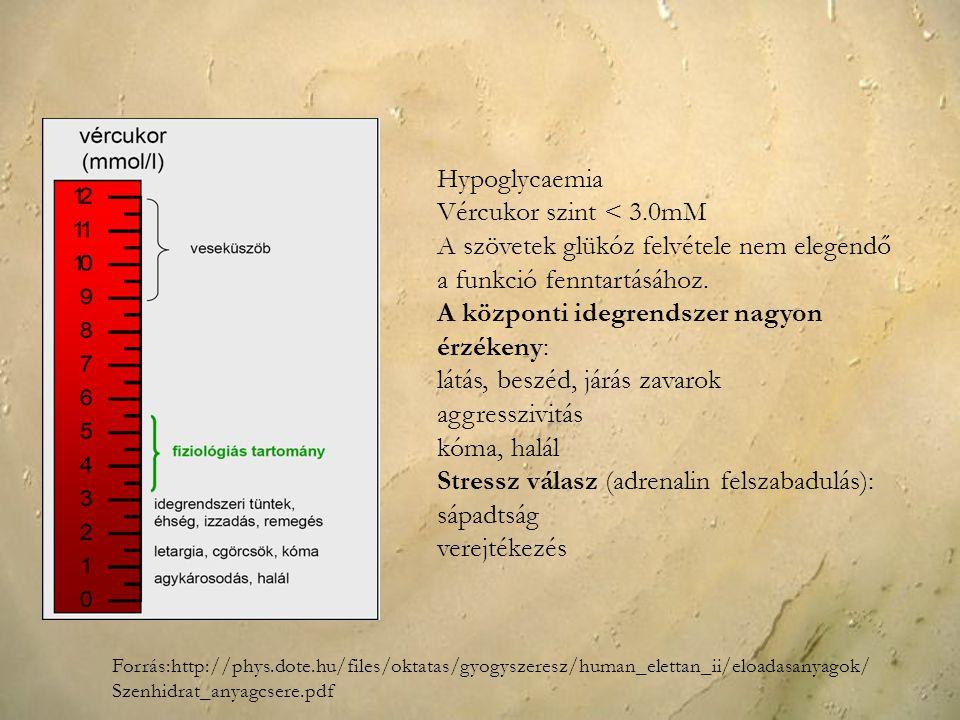 Hypoglycaemia Vércukor szint < 3.0mM A szövetek glükóz felvétele nem elegendő a funkció fenntartásához. A központi idegrendszer nagyon érzékeny: látás