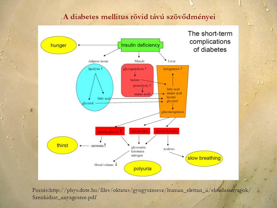 Forrás:http://phys.dote.hu/files/oktatas/gyogyszeresz/human_elettan_ii/eloadasanyagok/ Szenhidrat_anyagcsere.pdf A diabetes mellitus rövid távú szövőd