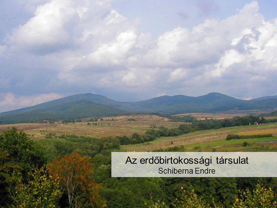Az erdőbirtokossági társulat Schiberna Endre