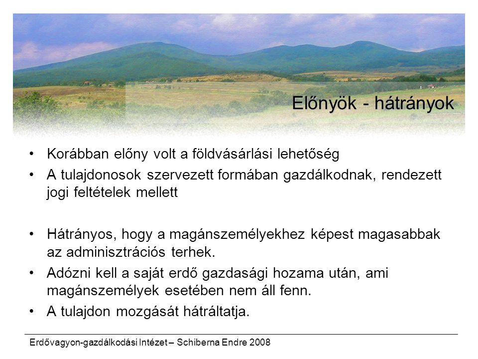Erdővagyon-gazdálkodási Intézet – Schiberna Endre 2008 Előnyök - hátrányok Korábban előny volt a földvásárlási lehetőség A tulajdonosok szervezett for