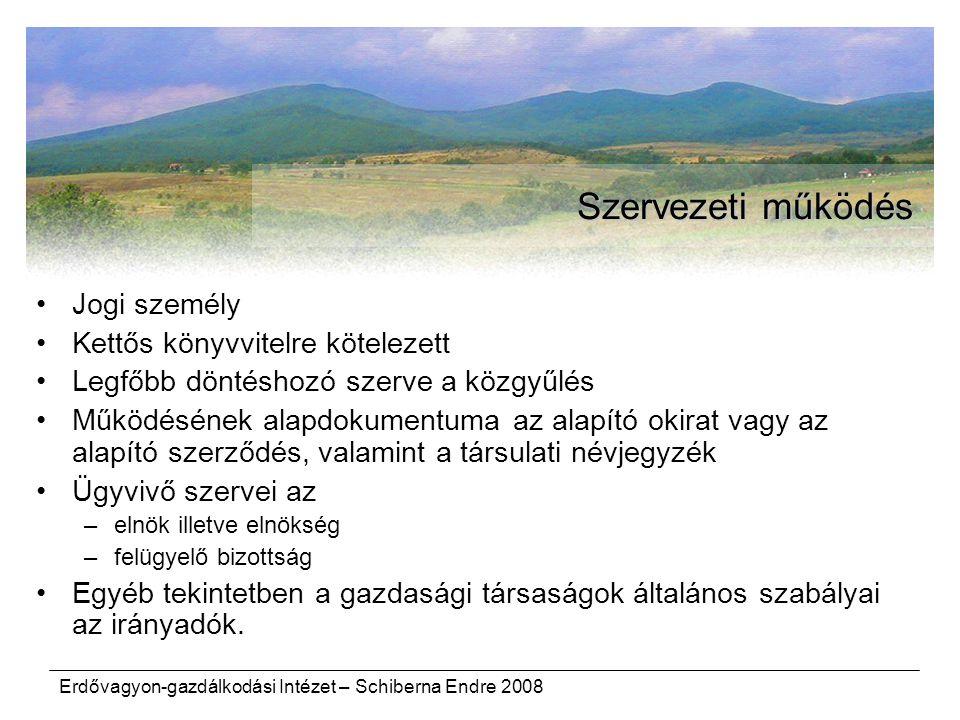 Erdővagyon-gazdálkodási Intézet – Schiberna Endre 2008 Szervezeti működés Jogi személy Kettős könyvvitelre kötelezett Legfőbb döntéshozó szerve a közg