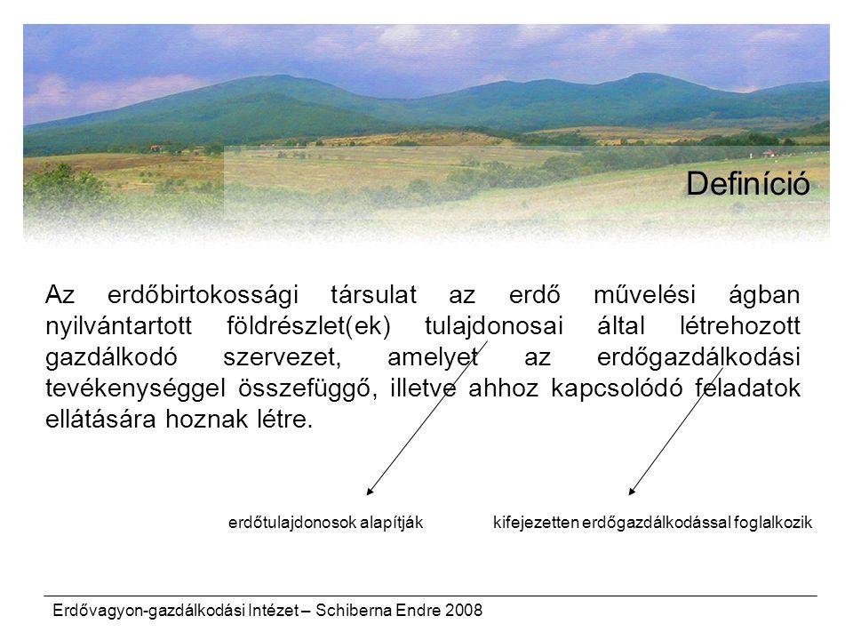 Erdővagyon-gazdálkodási Intézet – Schiberna Endre 2008 Definíció Az erdőbirtokossági társulat az erdő művelési ágban nyilvántartott földrészlet(ek) tulajdonosai által létrehozott gazdálkodó szervezet, amelyet az erdőgazdálkodási tevékenységgel összefüggő, illetve ahhoz kapcsolódó feladatok ellátására hoznak létre.