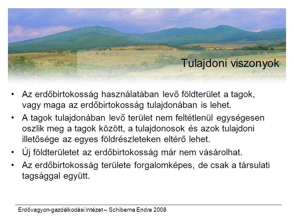 Erdővagyon-gazdálkodási Intézet – Schiberna Endre 2008 Tulajdoni viszonyok Az erdőbirtokosság használatában levő földterület a tagok, vagy maga az erd
