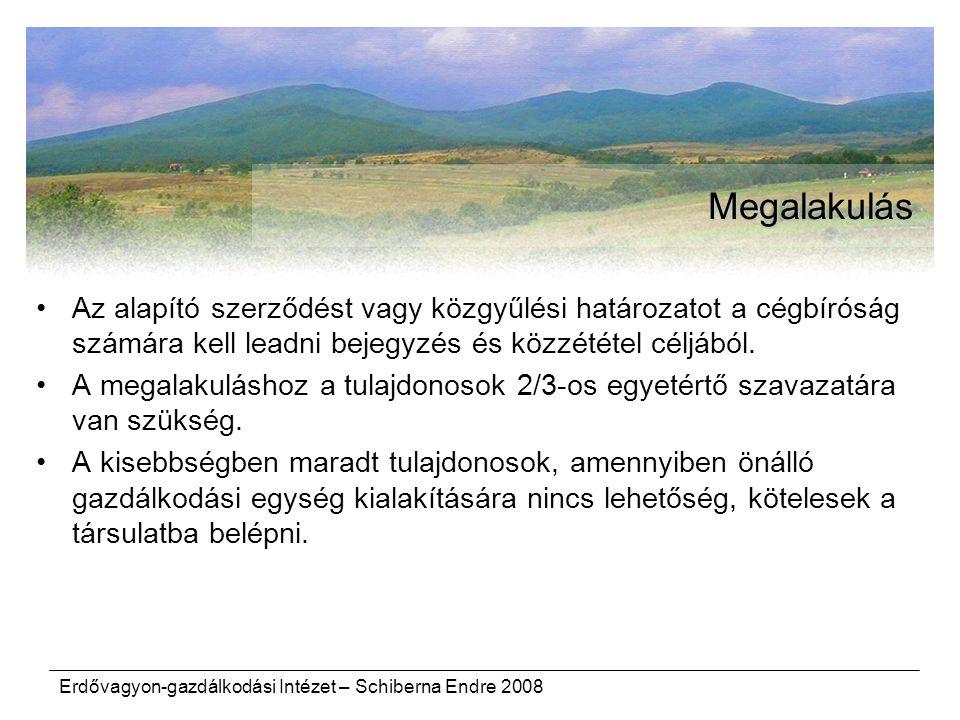 Erdővagyon-gazdálkodási Intézet – Schiberna Endre 2008 Megalakulás Az alapító szerződést vagy közgyűlési határozatot a cégbíróság számára kell leadni bejegyzés és közzététel céljából.