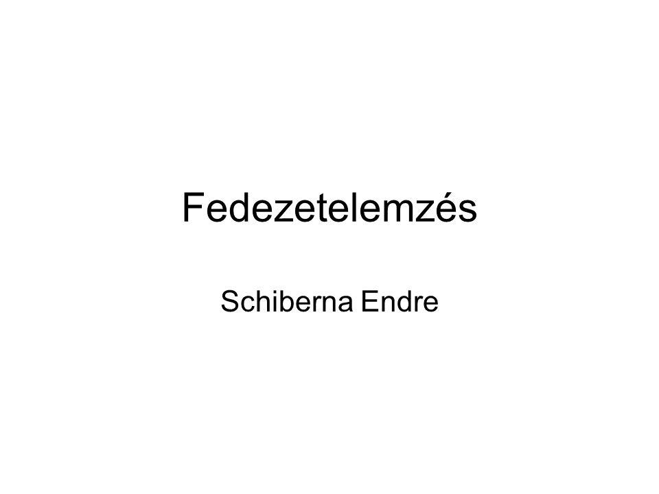 Fedezetelemzés Schiberna Endre