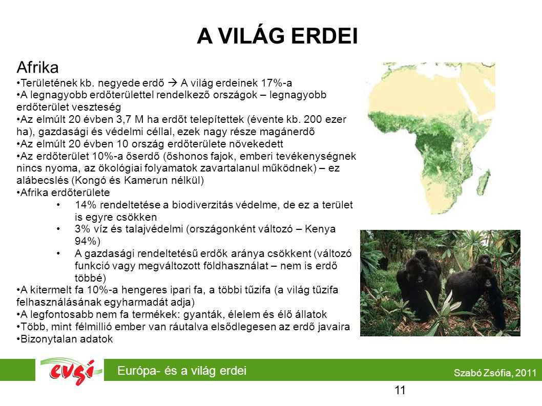Európa- és a világ erdei A VILÁG ERDEI Afrika Területének kb. negyede erdő  A világ erdeinek 17%-a A legnagyobb erdőterülettel rendelkező országok –