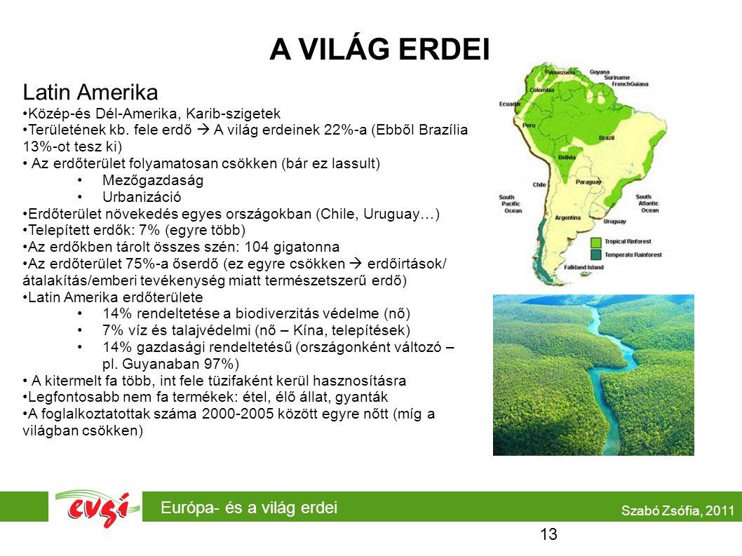 Európa- és a világ erdei A VILÁG ERDEI Latin Amerika Közép-és Dél-Amerika, Karib-szigetek Területének kb. fele erdő  A világ erdeinek 22%-a (Ebből Br