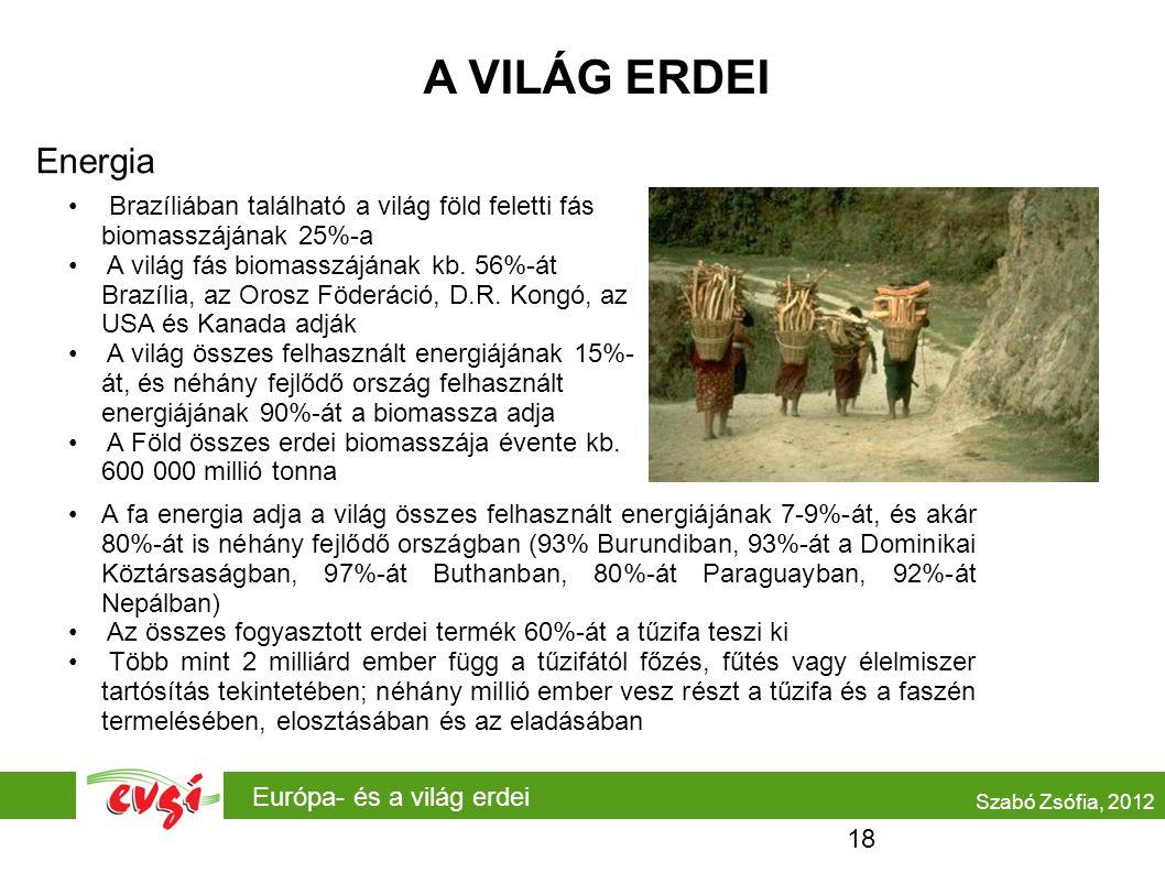 Európa- és a világ erdei A VILÁG ERDEI Energia Szabó Zsófia, 2012 A fa energia adja a világ összes felhasznált energiájának 7-9%-át, és akár 80%-át is