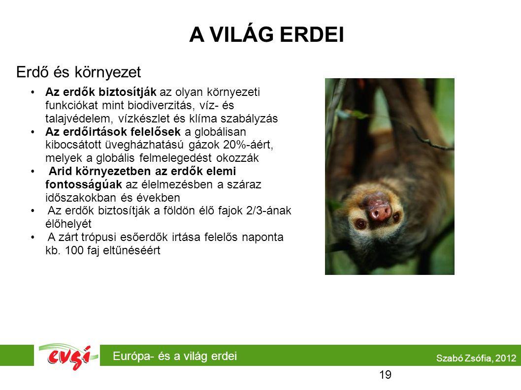 Európa- és a világ erdei A VILÁG ERDEI Erdő és környezet Szabó Zsófia, 2012 Az erdők biztosítják az olyan környezeti funkciókat mint biodiverzitás, ví