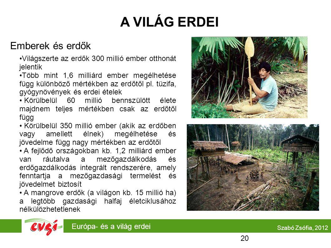 Európa- és a világ erdei A VILÁG ERDEI Emberek és erdők Szabó Zsófia, 2012 Világszerte az erdők 300 millió ember otthonát jelentik Több mint 1,6 milli