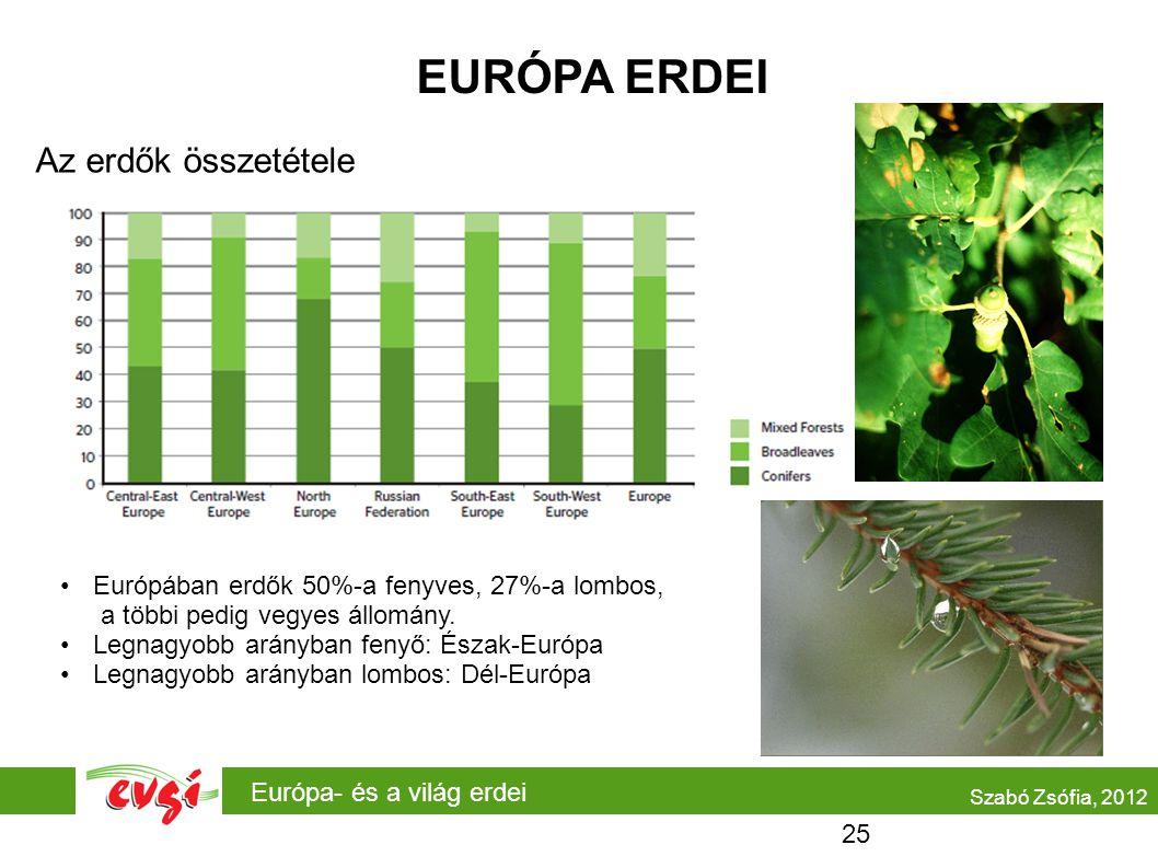 Európa- és a világ erdei EURÓPA ERDEI Az erdők összetétele Európában erdők 50%-a fenyves, 27%-a lombos, a többi pedig vegyes állomány. Legnagyobb arán