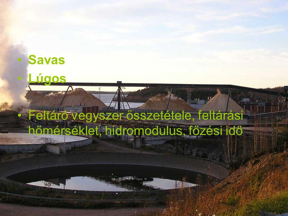 Savas Lúgos Feltáró vegyszer összetétele, feltárási hőmérséklet, hidromodulus, főzési idő