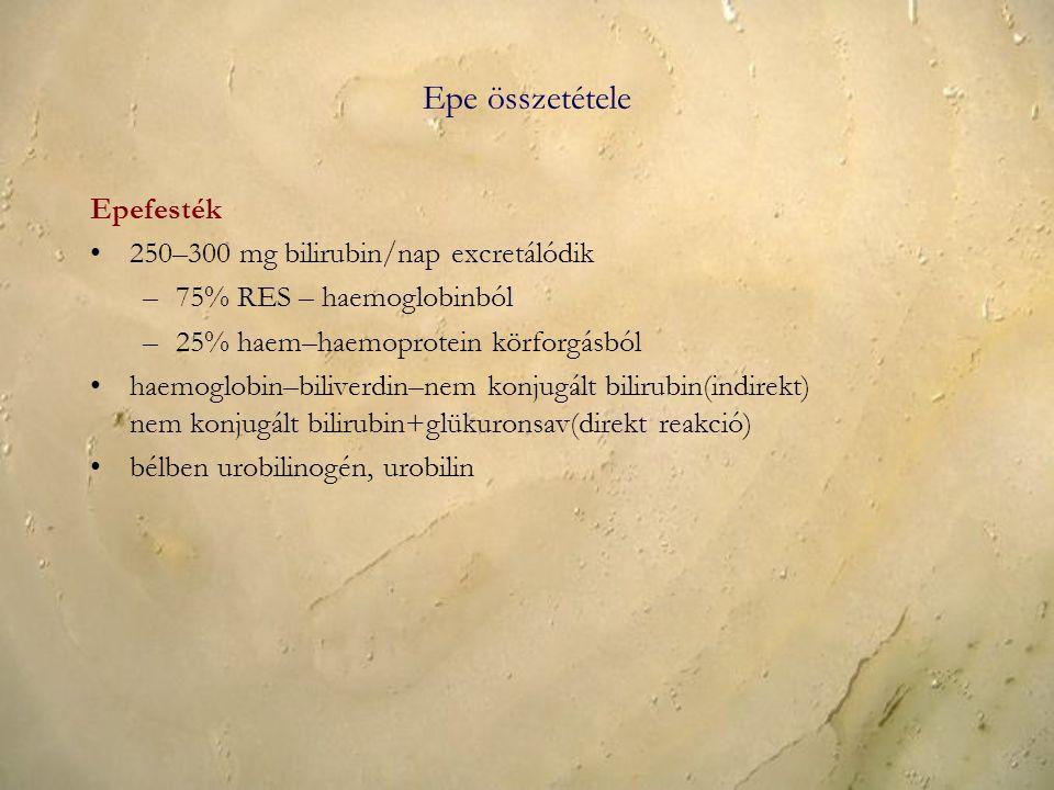 Epe összetétele Epefesték 250–300 mg bilirubin/nap excretálódik –75% RES – haemoglobinból –25% haem–haemoprotein körforgásból haemoglobin–biliverdin–n