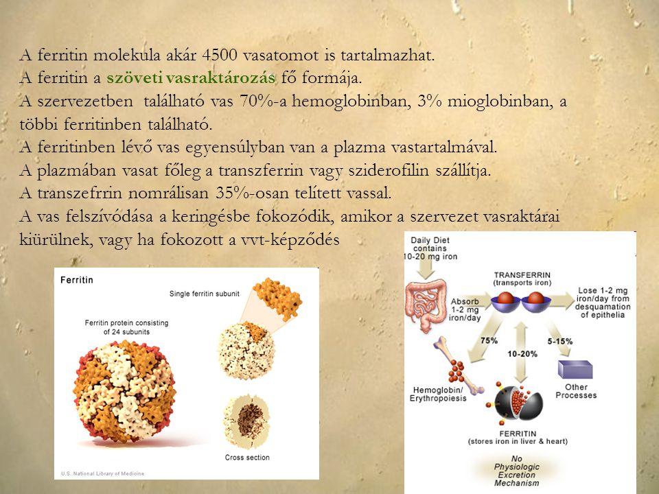 A ferritin molekula akár 4500 vasatomot is tartalmazhat. A ferritin a szöveti vasraktározás fő formája. A szervezetben található vas 70%-a hemoglobinb