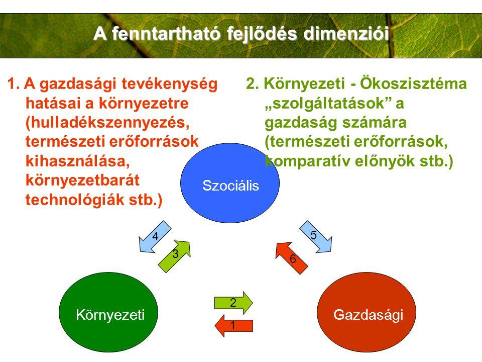 A fenntartható fejlődés dimenziói 1. A gazdasági tevékenység hatásai a környezetre (hulladékszennyezés, természeti erőforrások kihasználása, környezet