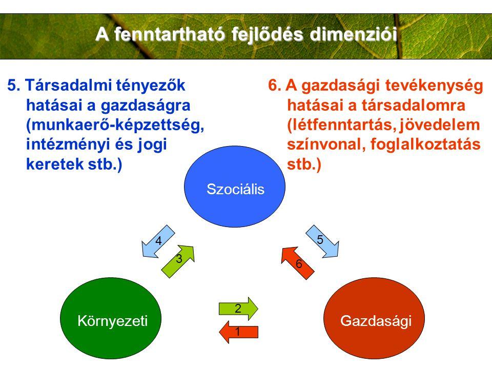 A fenntartható fejlődés dimenziói Szociális KörnyezetiGazdasági 2 1 3 4 5 6 5. Társadalmi tényezők hatásai a gazdaságra (munkaerő-képzettség, intézmén