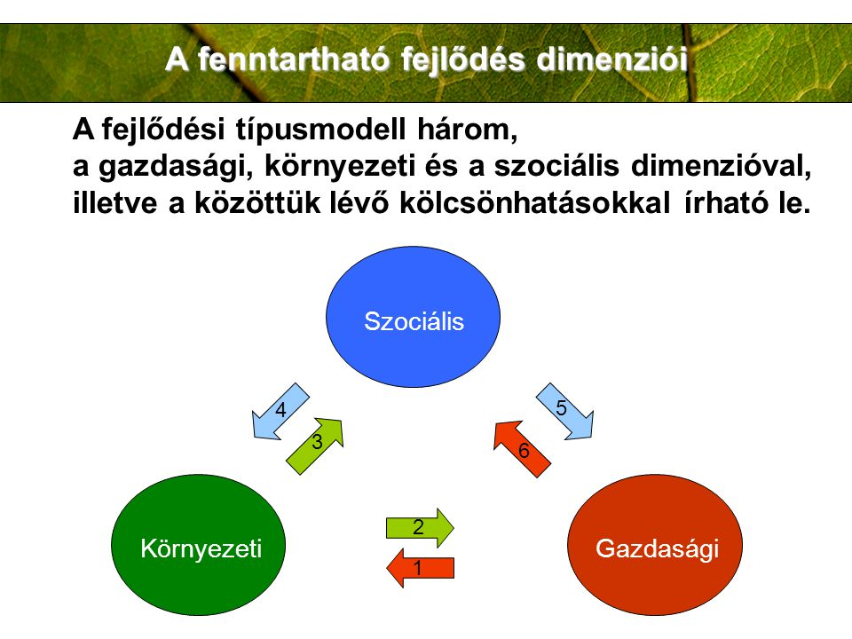 A fenntartható fejlődés dimenziói A fejlődési típusmodell három, a gazdasági, környezeti és a szociális dimenzióval, illetve a közöttük lévő kölcsönhatásokkal írható le.