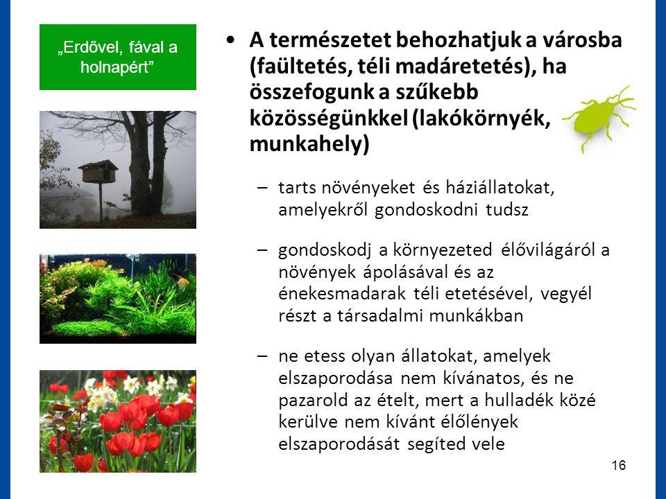 """""""Erdővel, fával a holnapért 16 A természetet behozhatjuk a városba (faültetés, téli madáretetés), ha összefogunk a szűkebb közösségünkkel (lakókörnyék, munkahely) –tarts növényeket és háziállatokat, amelyekről gondoskodni tudsz –gondoskodj a környezeted élővilágáról a növények ápolásával és az énekesmadarak téli etetésével, vegyél részt a társadalmi munkákban –ne etess olyan állatokat, amelyek elszaporodása nem kívánatos, és ne pazarold az ételt, mert a hulladék közé kerülve nem kívánt élőlények elszaporodását segíted vele"""