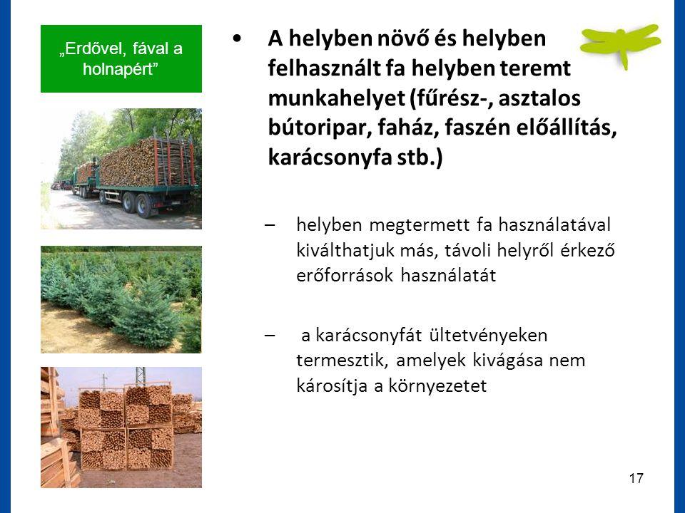 """""""Erdővel, fával a holnapért 17 A helyben növő és helyben felhasznált fa helyben teremt munkahelyet (fűrész-, asztalos bútoripar, faház, faszén előállítás, karácsonyfa stb.) –helyben megtermett fa használatával kiválthatjuk más, távoli helyről érkező erőforrások használatát – a karácsonyfát ültetvényeken termesztik, amelyek kivágása nem károsítja a környezetet"""