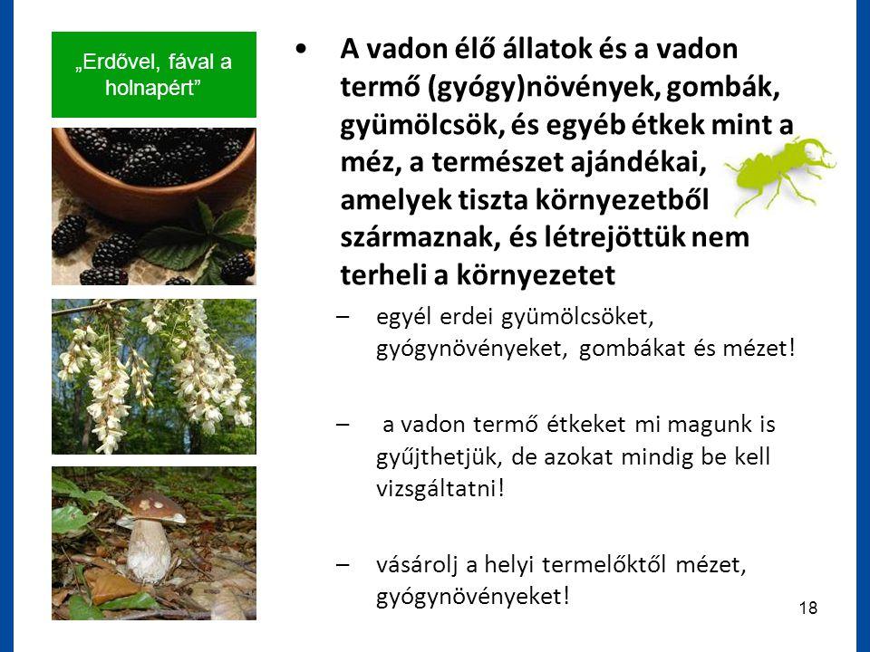 """""""Erdővel, fával a holnapért 18 A vadon élő állatok és a vadon termő (gyógy)növények, gombák, gyümölcsök, és egyéb étkek mint a méz, a természet ajándékai, amelyek tiszta környezetből származnak, és létrejöttük nem terheli a környezetet –egyél erdei gyümölcsöket, gyógynövényeket, gombákat és mézet."""