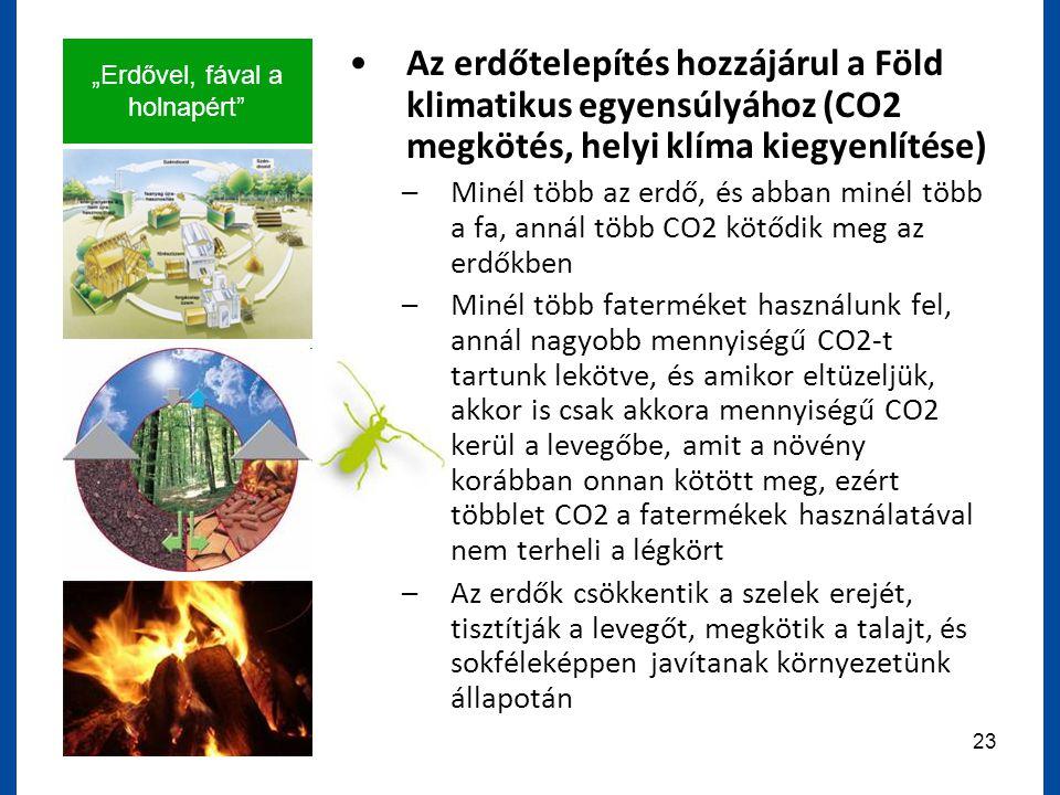 """""""Erdővel, fával a holnapért 23 Az erdőtelepítés hozzájárul a Föld klimatikus egyensúlyához (CO2 megkötés, helyi klíma kiegyenlítése) –Minél több az erdő, és abban minél több a fa, annál több CO2 kötődik meg az erdőkben –Minél több faterméket használunk fel, annál nagyobb mennyiségű CO2-t tartunk lekötve, és amikor eltüzeljük, akkor is csak akkora mennyiségű CO2 kerül a levegőbe, amit a növény korábban onnan kötött meg, ezért többlet CO2 a fatermékek használatával nem terheli a légkört –Az erdők csökkentik a szelek erejét, tisztítják a levegőt, megkötik a talajt, és sokféleképpen javítanak környezetünk állapotán"""