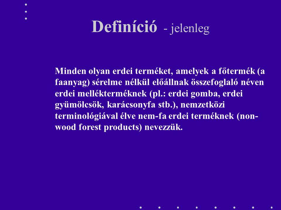 Definíció - jelenleg Minden olyan erdei terméket, amelyek a főtermék (a faanyag) sérelme nélkül előállnak összefoglaló néven erdei mellékterméknek (pl