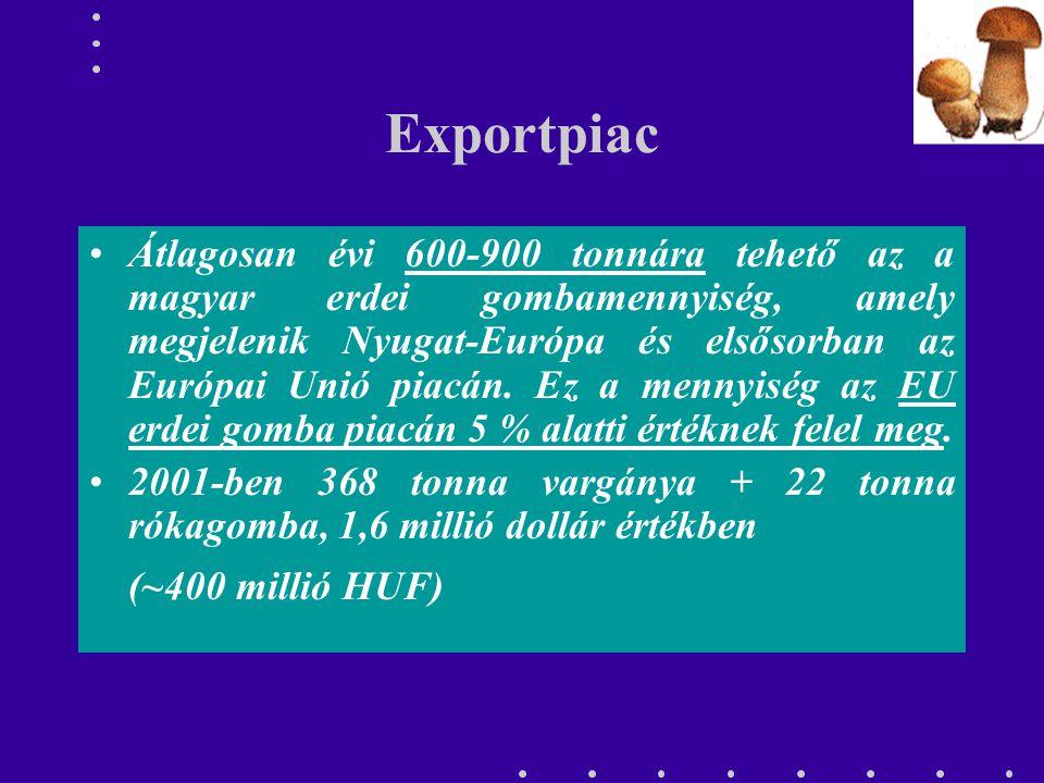 Exportpiac Átlagosan évi 600-900 tonnára tehető az a magyar erdei gombamennyiség, amely megjelenik Nyugat-Európa és elsősorban az Európai Unió piacán.