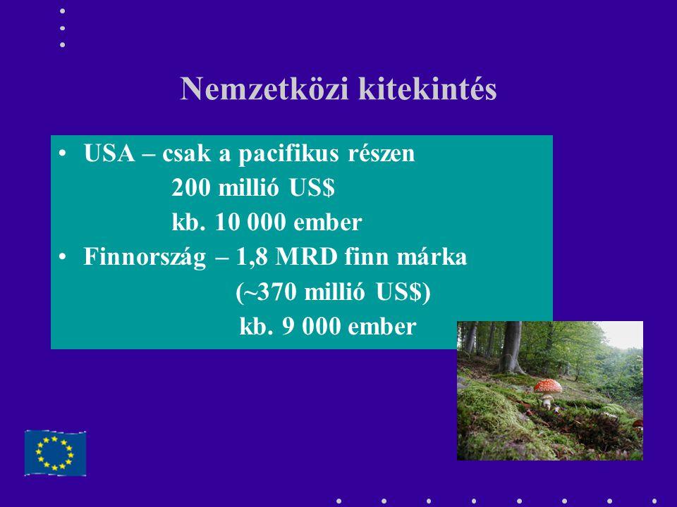Nemzetközi kitekintés USA – csak a pacifikus részen 200 millió US$ kb. 10 000 ember Finnország – 1,8 MRD finn márka (~370 millió US$) kb. 9 000 ember