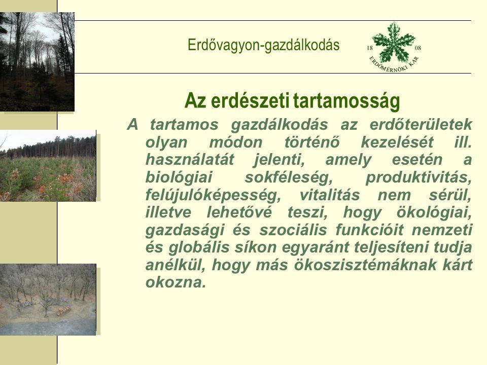 Erdővagyon-gazdálkodás Az erdészeti tartamosság A tartamos gazdálkodás az erdőterületek olyan módon történő kezelését ill.