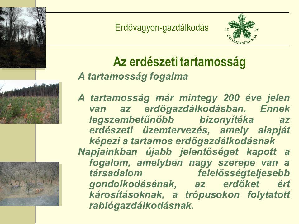 Erdővagyon-gazdálkodás Az erdészeti tartamosság A tartamosság fogalma A tartamosság már mintegy 200 éve jelen van az erdőgazdálkodásban.