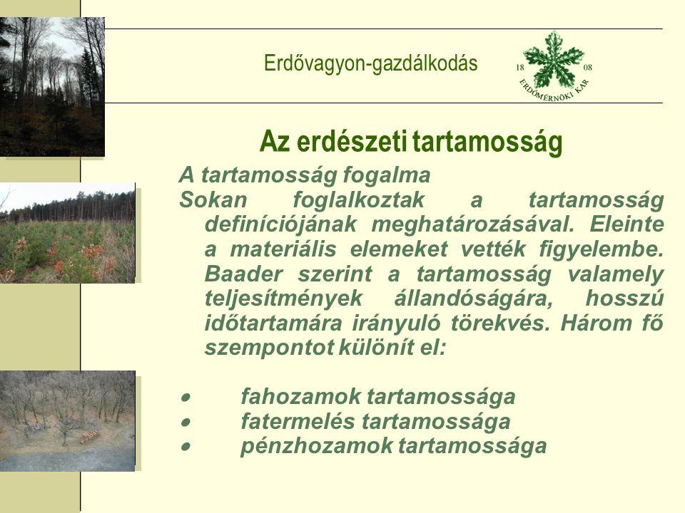 Erdővagyon-gazdálkodás Az erdészeti tartamosság A tartamosság fogalma Sokan foglalkoztak a tartamosság definíciójának meghatározásával.