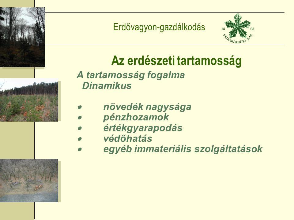 Erdővagyon-gazdálkodás Az erdészeti tartamosság A tartamosság fogalma Dinamikus  növedék nagysága  pénzhozamok  értékgyarapodás  védőhatás  egyéb immateriális szolgáltatások