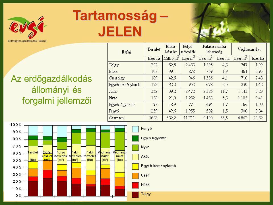 Tartamosság – JELEN Az erdőgazdálkodás állományi és forgalmi jellemzői Folyó növedék (m 3 ) Élőfa- készlet (m 3 ) Faki- termelés (m 3 ) Faki- termelés