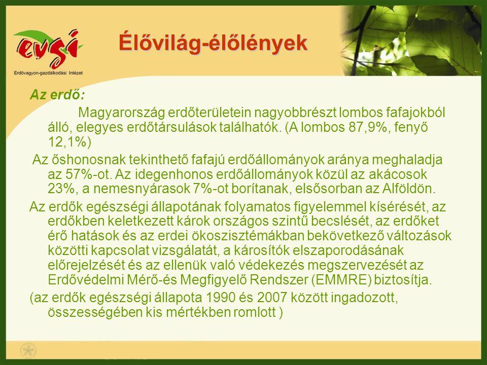 Élővilág-élőlények Az erdő: Magyarország erdőterületein nagyobbrészt lombos fafajokból álló, elegyes erdőtársulások találhatók. (A lombos 87,9%, fenyő