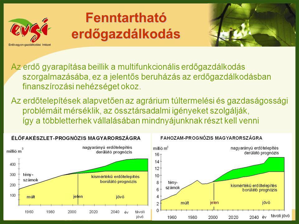 Fenntartható erdőgazdálkodás Az erdő gyarapítása beillik a multifunkcionális erdőgazdálkodás szorgalmazásába, ez a jelentős beruházás az erdőgazdálkod