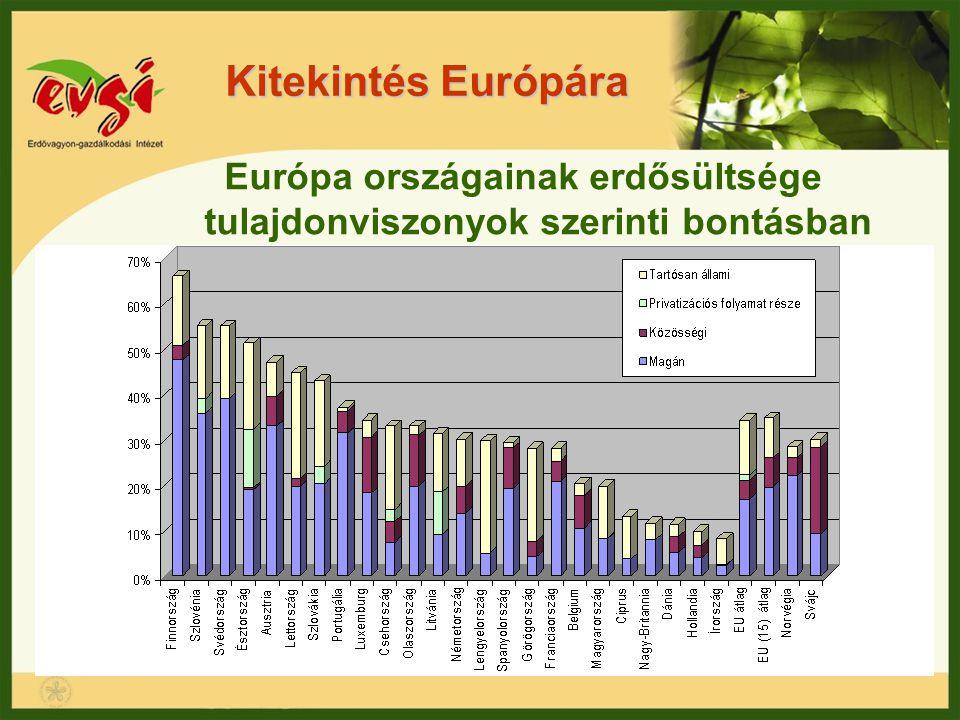 Kitekintés Európára Európa országainak erdősültsége tulajdonviszonyok szerinti bontásban