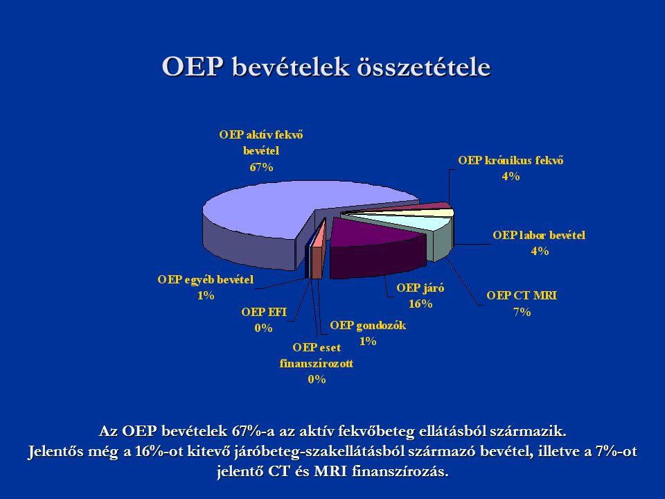 Az OEP bevételek 67%-a az aktív fekvőbeteg ellátásból származik. Jelentős még a 16%-ot kitevő járóbeteg-szakellátásból származó bevétel, illetve a 7%-