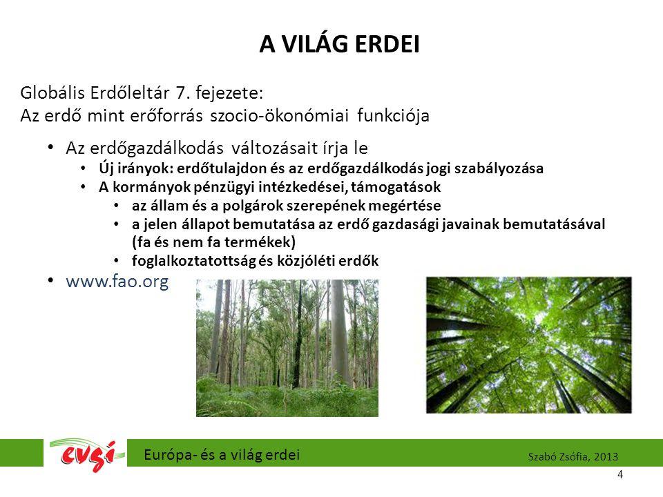 A VILÁG ERDEI Globális Erdőleltár 7.