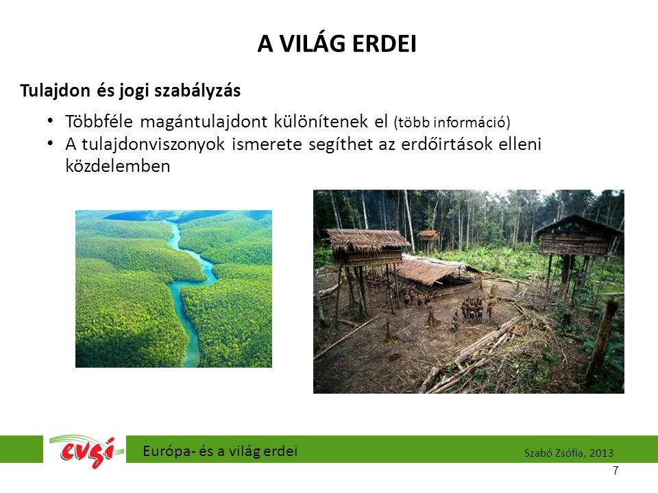 A VILÁG ERDEI Tulajdon és jogi szabályzás Többféle magántulajdont különítenek el (több információ) A tulajdonviszonyok ismerete segíthet az erdőirtások elleni közdelemben 7 Európa- és a világ erdei Szabó Zsófia, 2013