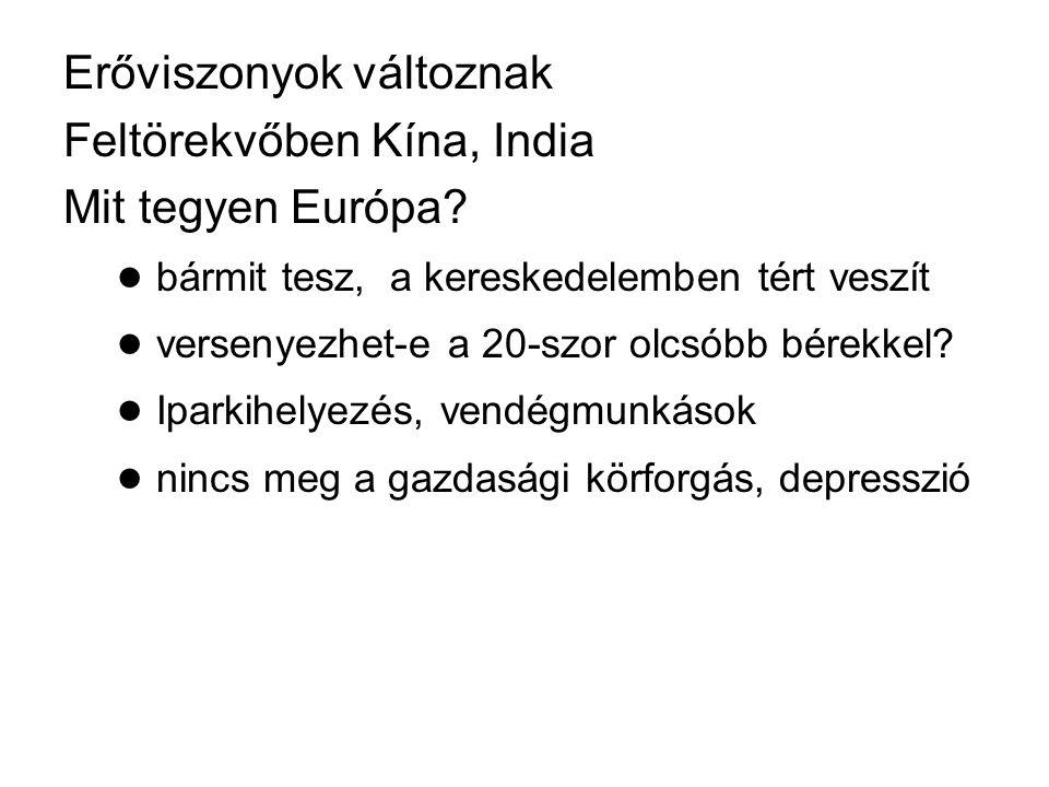 Európai problémák: ● térvesztés a kereskedelemben ● eurozóna működésképtelen ● demográfiai katasztrófa ● multikulturális koncepció kudarca ● értékvesztés (Oswald Spengler) ● szociális problémák (jövedelemdifferenciálódás) ● demokratikus deficit