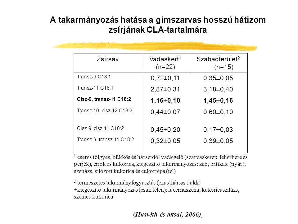 A takarmányozás hatása a gímszarvas hosszú hátizom zsírjának CLA-tartalmára (Husvéth és mtsai, 2006) ZsírsavVadaskert 1 (n=22) Szabadterület 2 (n=15)