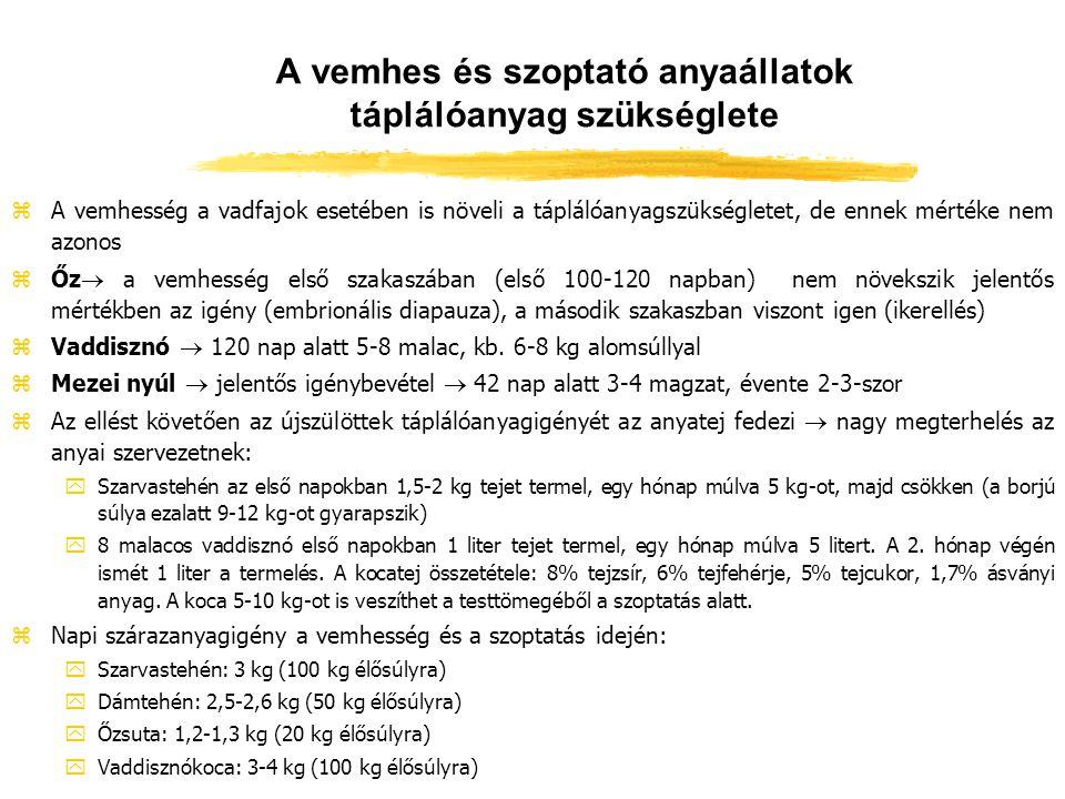 A növekedés táplálóanyagigénye zMinél nagyobb a napi súlygyarapodás, annál kisebb a fajlagos energiaigény  csökken az életfenntartás igénye zKezdetben anyatej, majd fokozatosan alakul ki az élőhely közelében fellelhető takarmányok fogyasztása zCserjék, füveshere, vadlegelő zSzarvas bikaborjú: yGyors növekedésű y2 hónap alatt megkétszerezi a születési súlyát y0-1 éves kor között 300-350 g/napi súlygyarapodás y1-2 éves kor között 150-170 g/nap zDámborjú: lassúbb fejlődésű, éves korú bika súlya 20-25 kg zŐz: gyors ütemű fejlődés, agancsduzzanat  jelentős Ca- és P-igény (rügy, gally, fakéreg, lucerna) zVadmalacok: kezdetben lassúbb, majd kb.