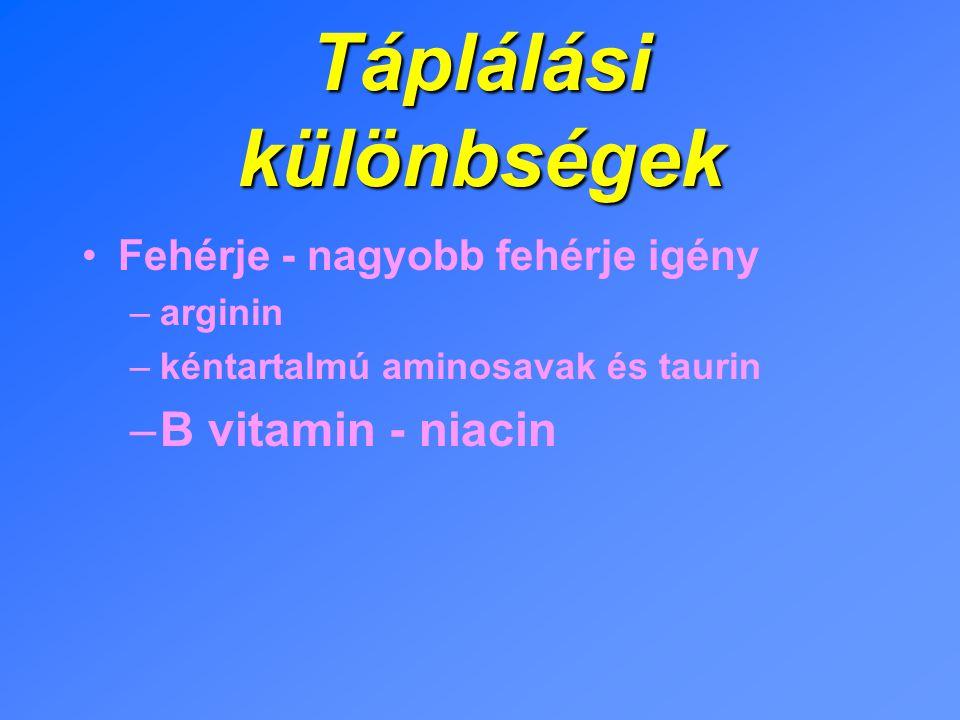 Táplálási különbségek Fehérje - nagyobb fehérje igény –arginin –kéntartalmú aminosavak és taurin –B vitamin - niacin